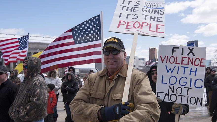 New Hampshire Senate Will Vote to Seize Guns